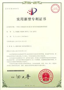 实用专利证书-一种用于对装备有ASR或ESP的汽车的底盘测功的装置